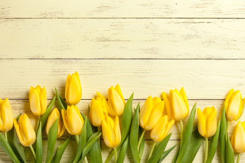 Make Time To Smell The….Tulips