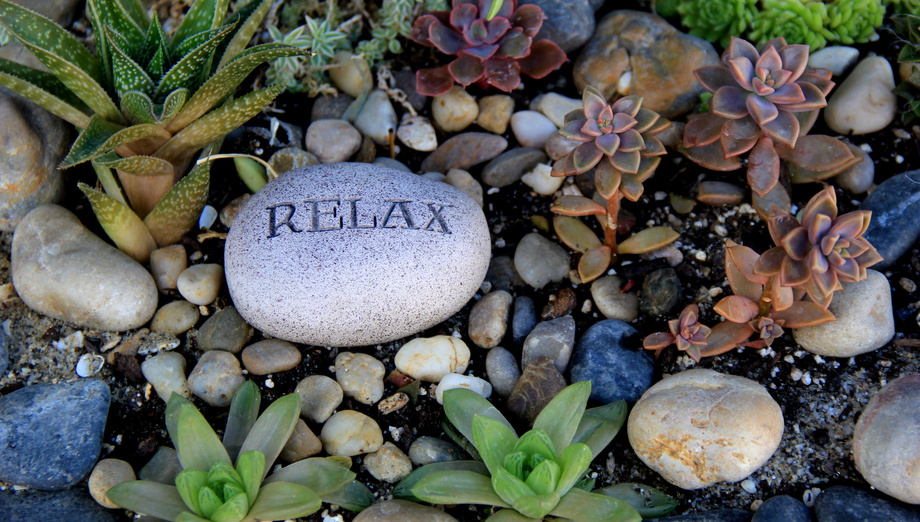 Rock Garden With Rocks And Plants, One Stone Reading The Word 'relax.'